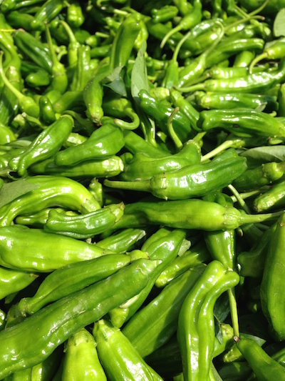 Shishito Peppers at Union Square Farmer's Market NYC